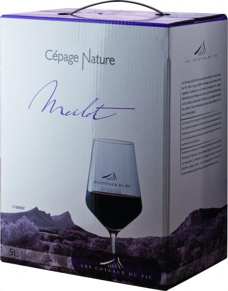 Coteaux du Pic Merlot Rotwein IGP Weinschlauch 5 Liter