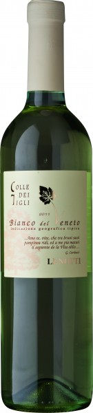 6 Flaschen fruchtiger Weisswein Lenotti Colle dei Tigli Italien IGT 2017